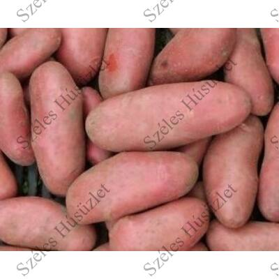 BK.Bio burgonya (kifli) lédig 1kg